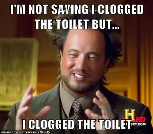 The toilet clogger